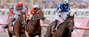 melbourn_cup